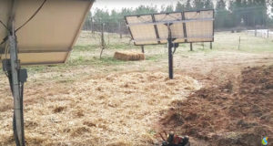 Read more about the article S.C. – Off Grid Solar Water System for Farm